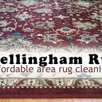 Bellingham Rug and Carpet Cleaner